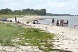 aktuelles_strandworkshop2.jpg