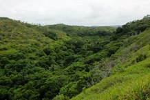 Tief eingeschnittenes Tal in Ngeremlengui