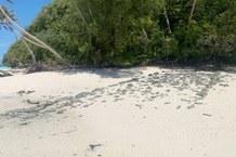 Steinplattform auf einer der Rock Islands