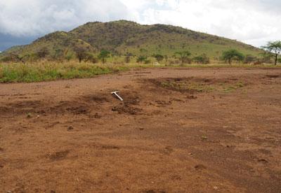 Sheet erosion on heavily overgrazed soils developed on Archean basement rocks in the central Serengeti National Park