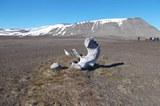 aktuelles_arktis.jpg