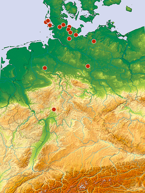 Projects in Germany