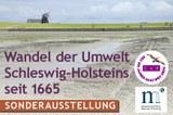 bild_museum_flensburg_web2.jpg