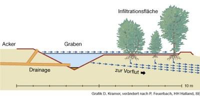 Schematische Darstellung einer integrierten Pufferzone